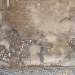 Aufsteigende Feuchte im Mauerwerk